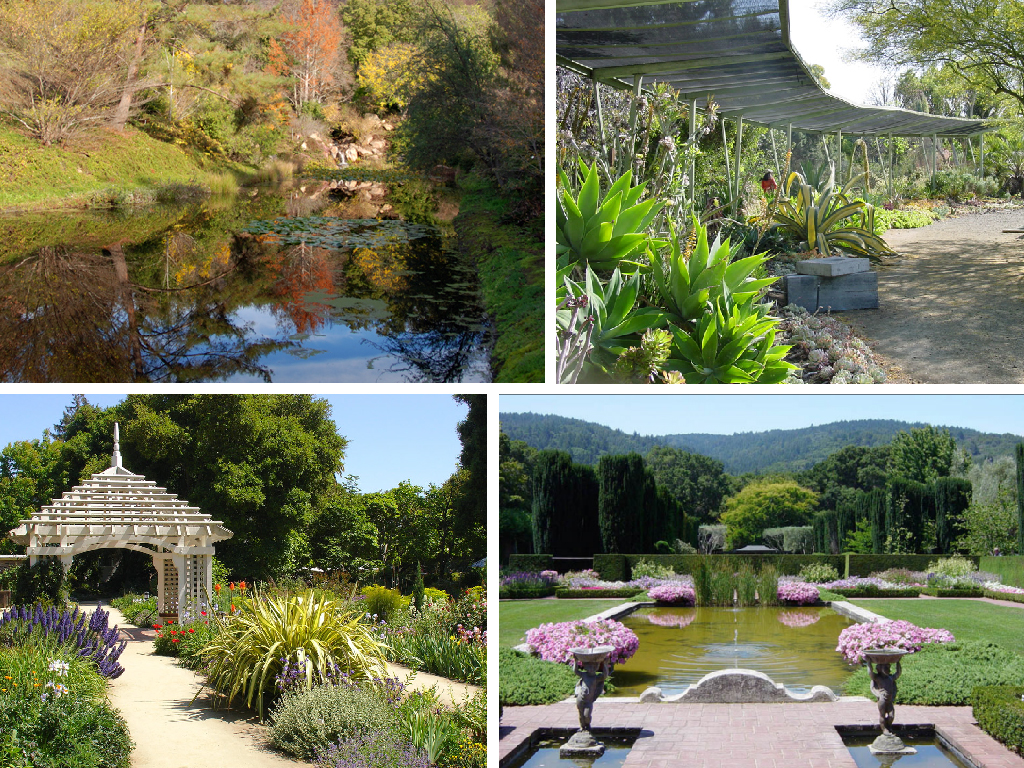 Inspiring Bay Area Public Gardens | Pacific Nurseries