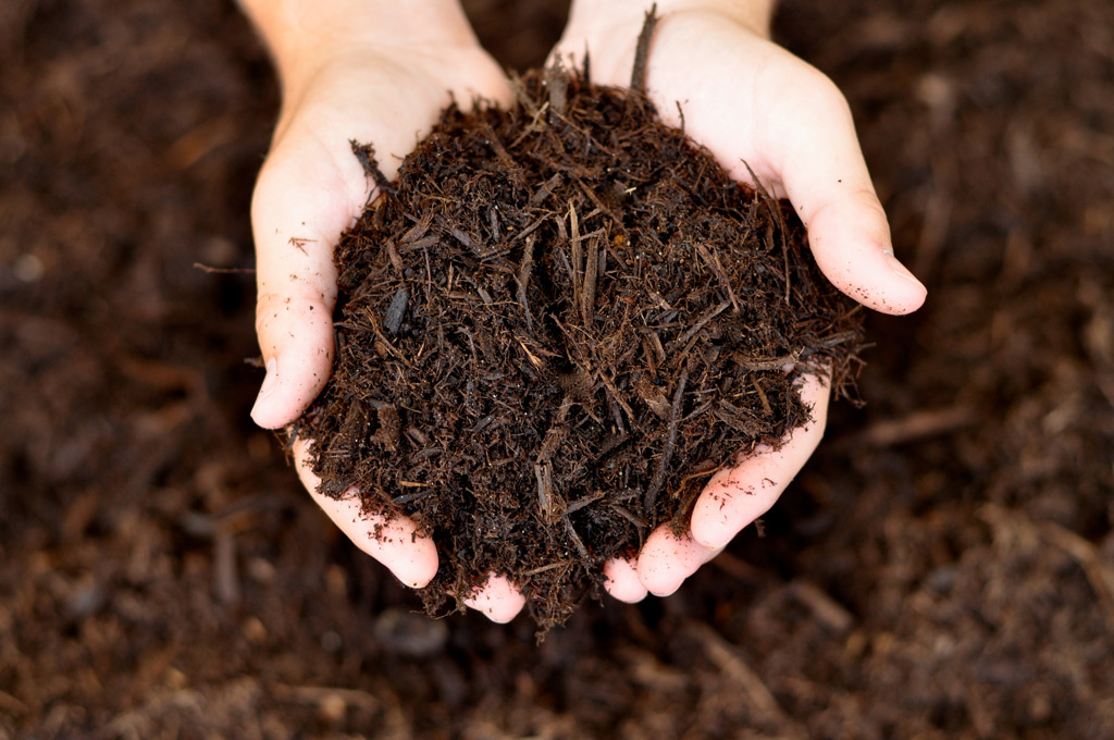 Water Saving Mulch | Pacific Nurseries