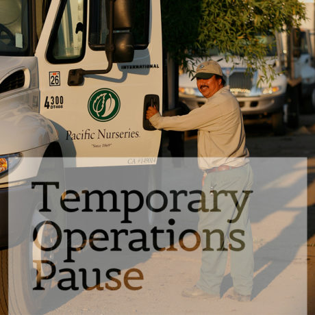 Temporary Operations Pause | Pacific Nurseries